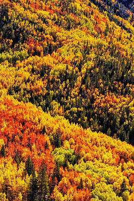 Mountainside Of Color Original by Teri Virbickis