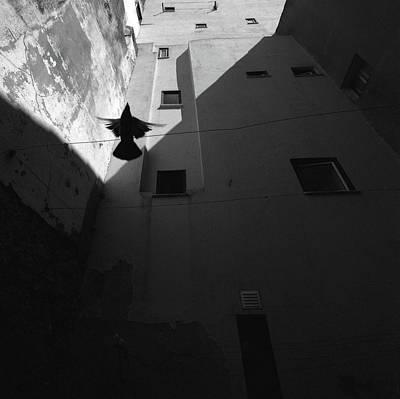 Portugal Photograph - Mouraria #2 by Nana Sousa Dias