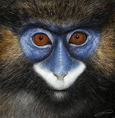 Digital Art - Moustached Guenon 2 by Owen Bell