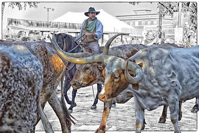 Cattle Drive Photograph - Move Em Out by Debby Richards