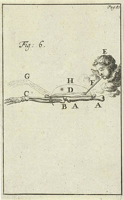 Movement Of The Arm, Fig 6, Jan Luyken, Jan Claesz Ten Hoorn Art Print by Jan Luyken And Jan Claesz Ten Hoorn