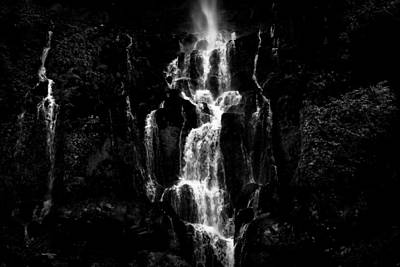 Photograph - Moving In The Dark by Edgar Laureano