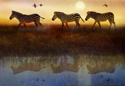 South Africa Zebra Painting - Moving North Zebras And Ibis   by R christopher Vest