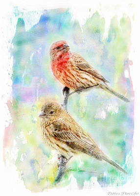 Mr And Mrs House Finch - Digital Paint Art Print by Debbie Portwood