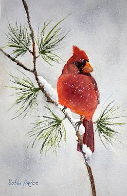 Mr Cardinal Art Print by Bobbi Price