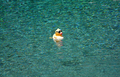 Rubberduck Photograph - Mr Cool In The Pool by Jay Milo