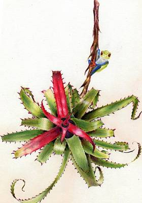 Neoregelia Painting - Mr. Frog Surveys The Morning by Penrith Goff