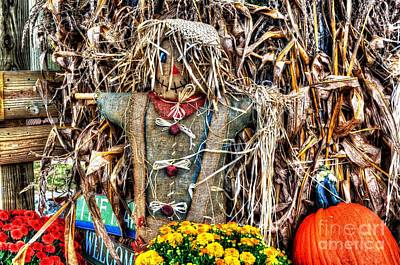 Photograph - Mr. Scarecrow by Paul Mashburn