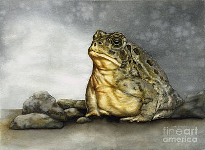 Mr. Woodhouse Toad Art Print by Nan Wright
