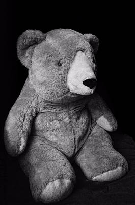Photograph - Mr.bear ...stuffed Animal by Tom Druin