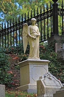 Photograph - Mt Auburn Cemetery 3 by Michael Saunders