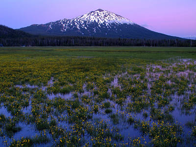 Print featuring the photograph Mt. Bachelor Twilight by Kevin Desrosiers