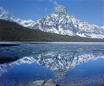 Photograph - 1m3641-mt. Chephren Reflect by Ed  Cooper Photography