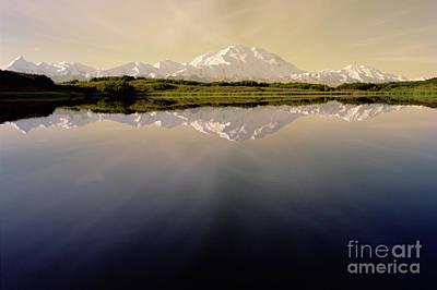 Photograph - Mt Denali In Morning Light by Yva Momatiuk John Eastcott