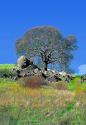Mt. Diablo Oak Tree Art Print by Wernher Krutein