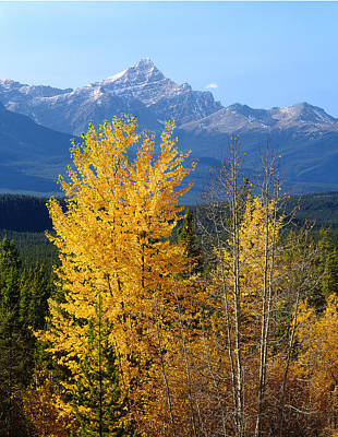 Photograph - 1m3830-mt. Edith Cavell And Valley by Ed  Cooper Photography