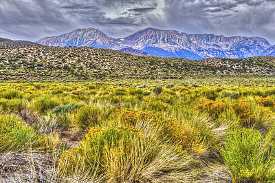 Photograph - Mt Gibbs And Mt Dana Mono Basin 2 by SC Heffner