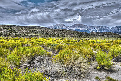 Photograph - Mt Gibbs And Mt Dana Mono Basin by SC Heffner