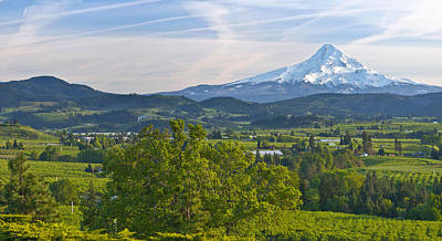 Spring Scenes Photograph - Mt Hood And Hood River Valley by Panoramic Images