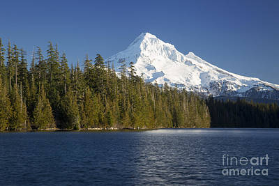 Photograph - Mt Hood And Lost Lake by Brian Jannsen