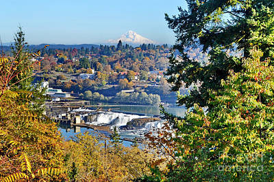 Photograph - Mt Hood And Willamette Falls by Ansel Price