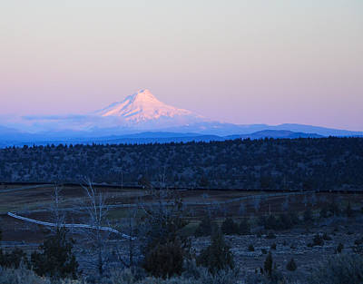 Photograph - Mt Hood At Dawn by Linda Larson