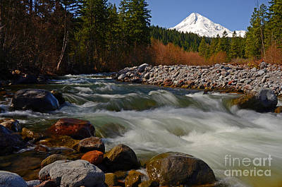 Mt. Hood Landscape Art Print by Nick  Boren