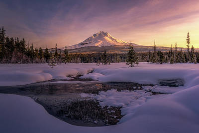 Volcano Photograph - Mt Hood Meadow by Kevin Shearer