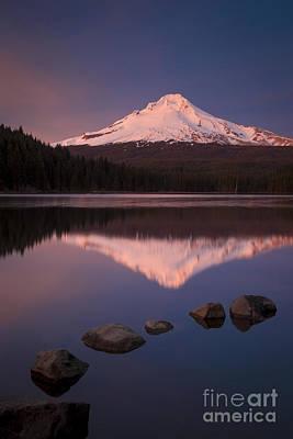 Fir Trees Photograph - Mt Hood Reflection by Brian Jannsen