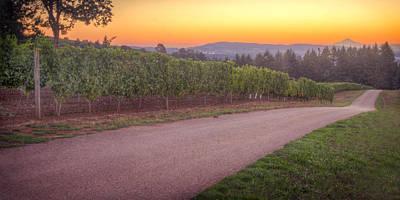 Pinot Noir Photograph - Mt Hood Sunrise... by Marvin Mast