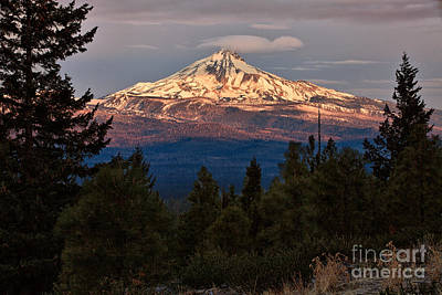 Photograph - Mt. Jefferson At Dawn by Stuart Gordon
