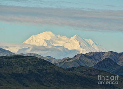 Photograph - Mt Mckinley In  Alaska by Les Palenik