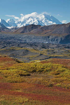 Mt. Massive Photograph - Mt Mckinley, Tallest Peak In North by Hugh Rose