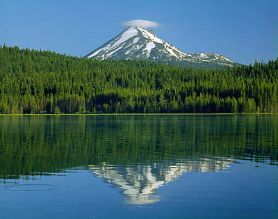 1m5705-h-mt. Mcloughlin From Lake Of The Woods Art Print