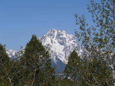 Photograph - Mt Moran by Jeffrey Randolph