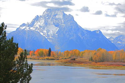 Mt. Moran Majesty Art Print