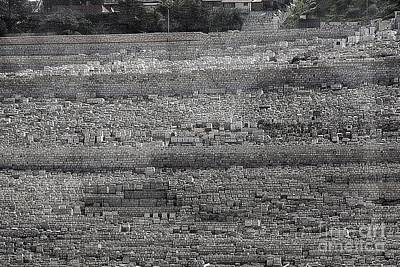 Photograph - Mt. Olives by Tom Griffithe
