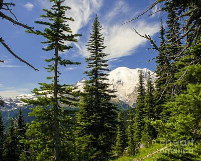 Photograph - Mt. Rainier Alpine Meadow I by Chuck Flewelling