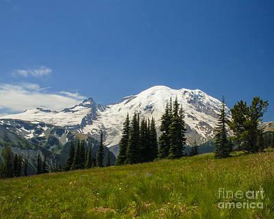 Photograph - Mt. Rainier Alpine Meadow II by Chuck Flewelling