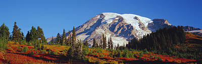 Mt. Rainier And Fall Color Art Print by Panoramic Images