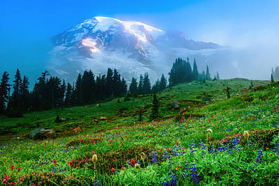 Photograph - Mt. Rainier And Wildflowers by Chris McKenna
