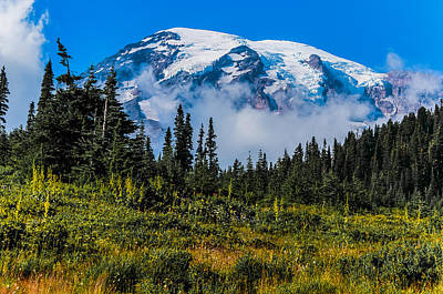 Art Print featuring the photograph Mt. Rainier by Chris McKenna