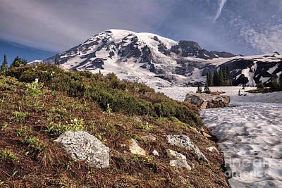 Photograph - Mt. Rainier From Paradise Park by Stuart Gordon