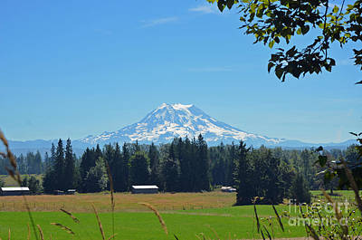 Mt. Rainier From The Western Side Art Print