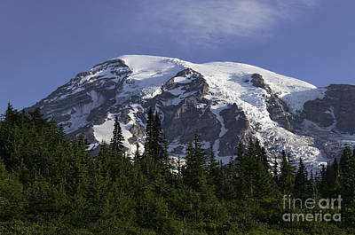 Photograph - Mt Rainier Landscape by Sharon Seaward