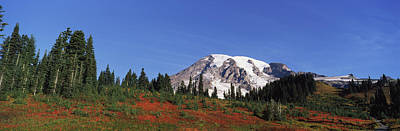 Mt Rainier National Park Photograph - Mt Rainier, Mt Rainier National Park by Panoramic Images