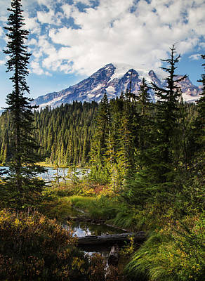 Photograph - Mt Rainier National Park by Angie Vogel