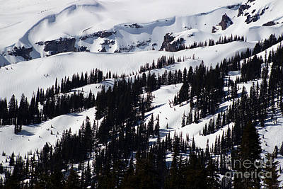 Photograph - Mt Rainier Slopes by Deanna Proffitt