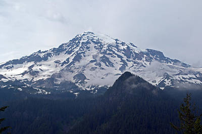 Mt. Massive Photograph - Mt. Rainier  by Tikvah's Hope
