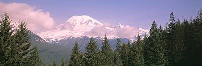 Mt Ranier Mt Ranier National Park Wa Art Print by Panoramic Images
